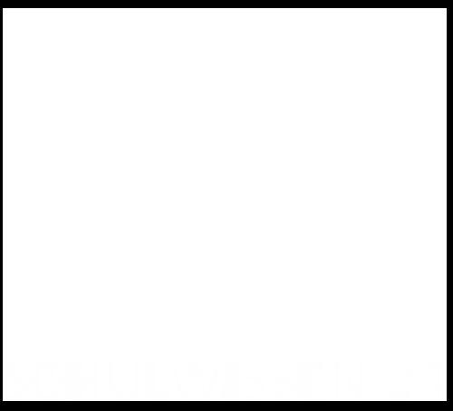Schulwissen24 - Mit Erfolg lernen